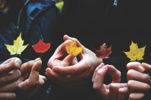 Five leaves in different colors being held in five different hands.